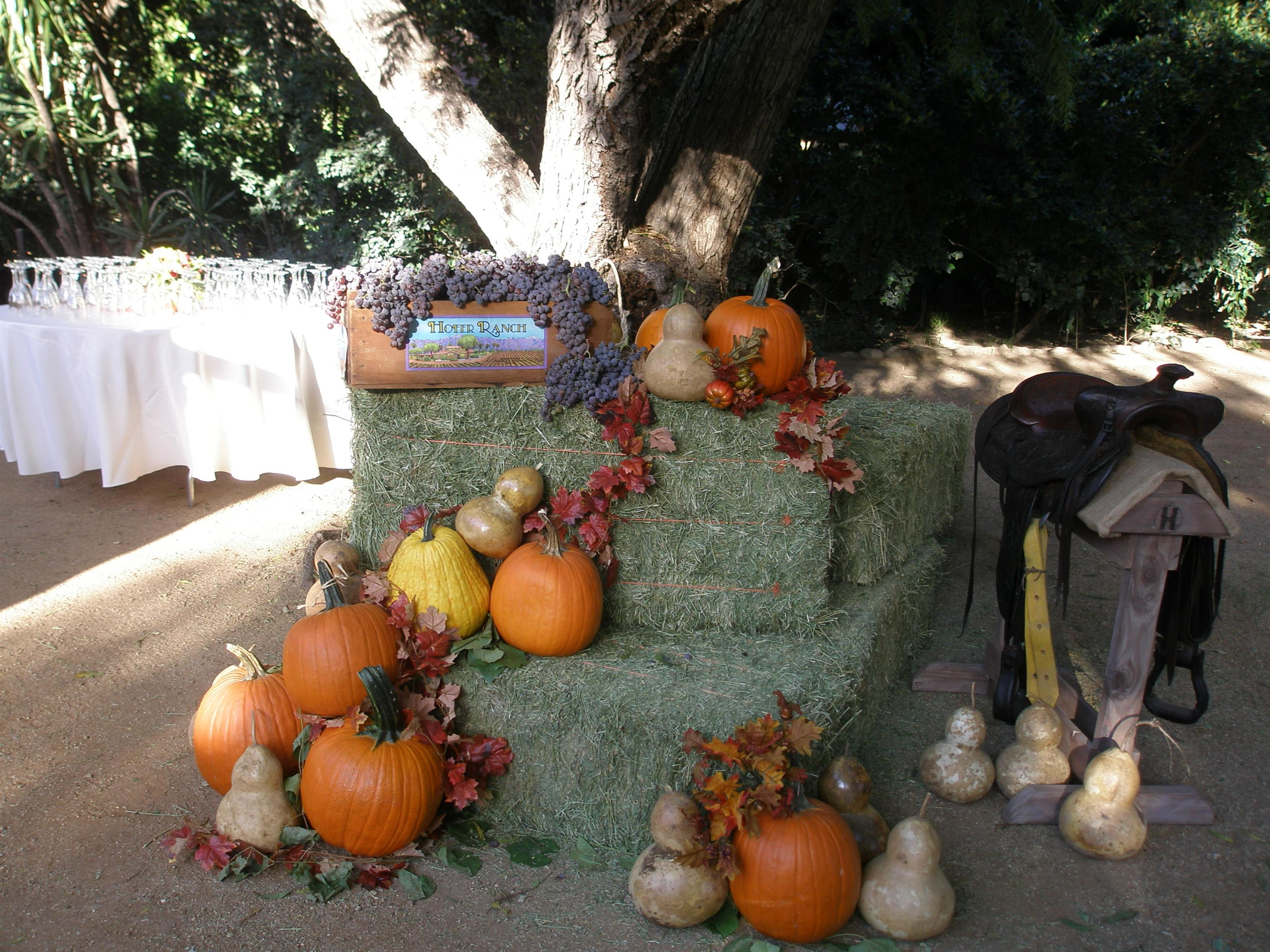 Pumpkins and gourds on hay bales at Hofer Ranch