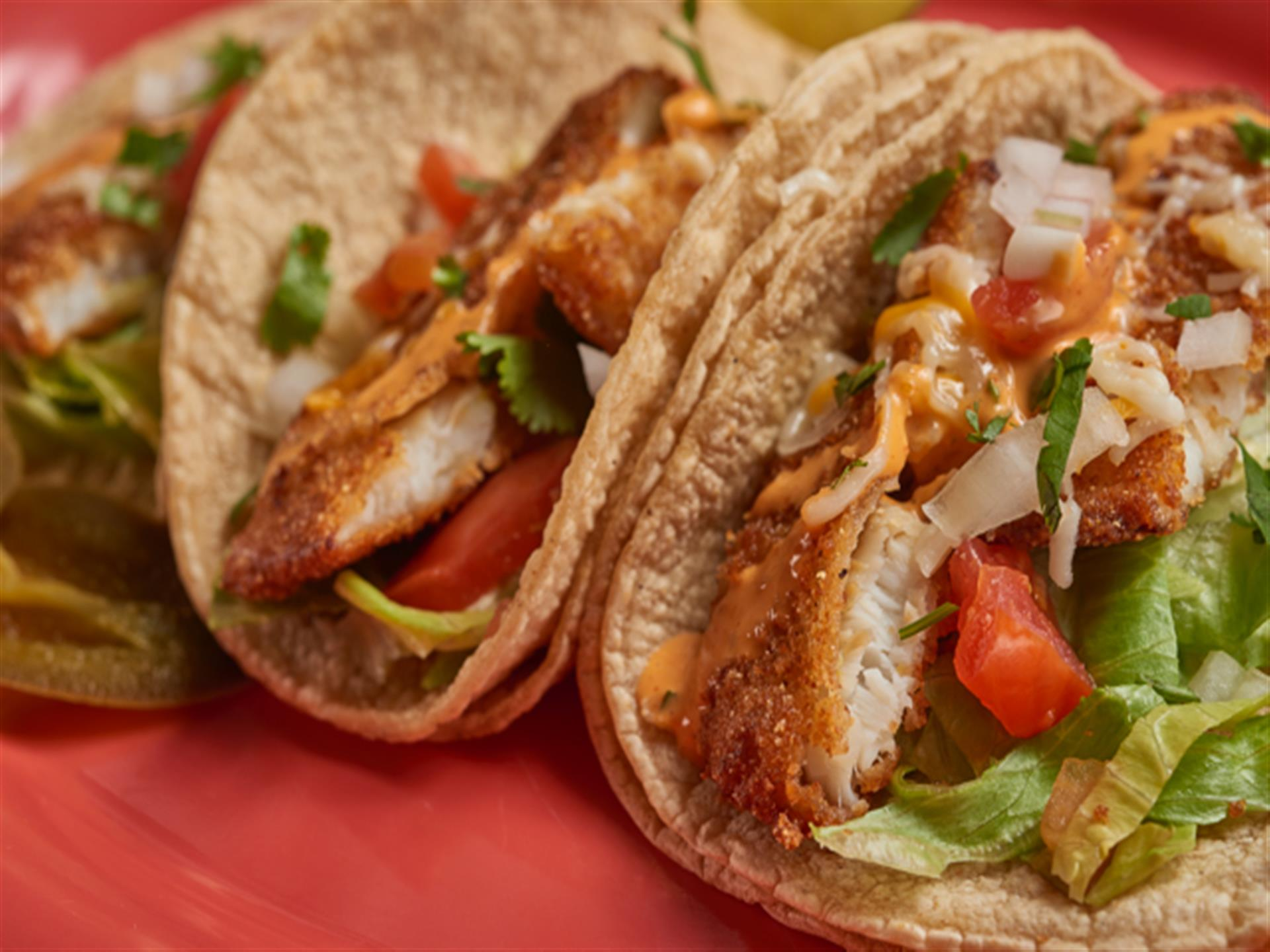 Three marinated chicken tacos with tomatoes and jalapeno slices.