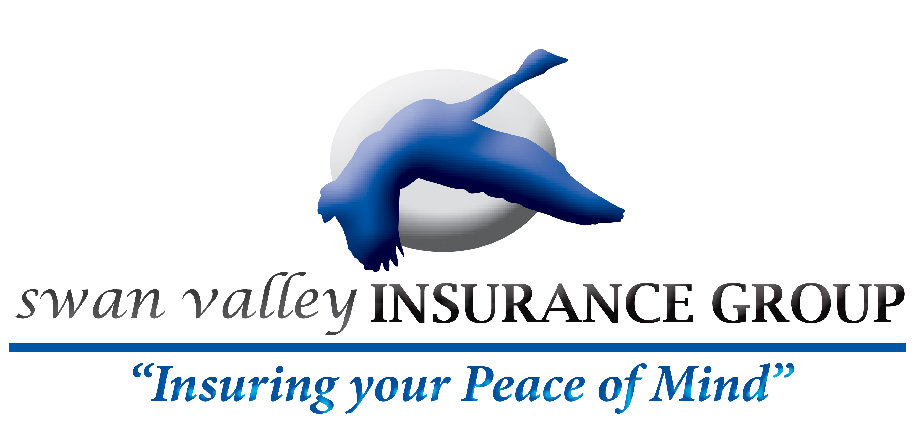 Swan Valley Insurance Group Ltd.