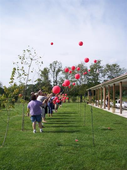 People holding red ballons in the yard