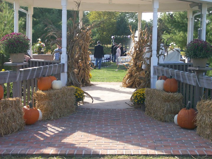 Photo of a wedding decoration with pumpkins