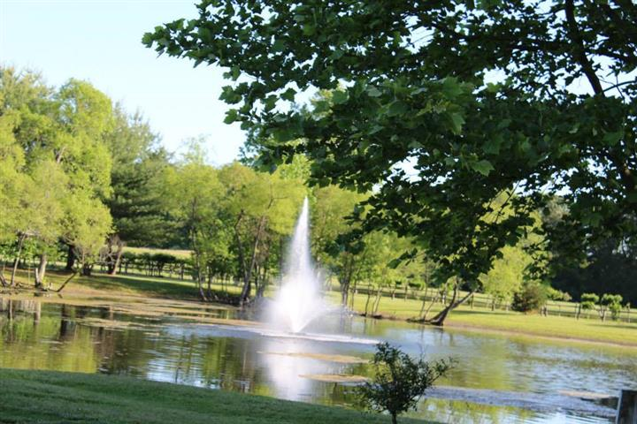 Outdoor shot of a lake with a fountain