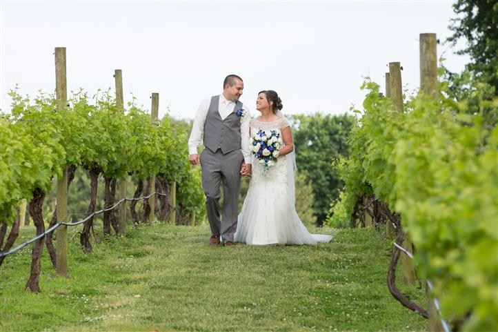 A wedding photo of a couple in the vineyard