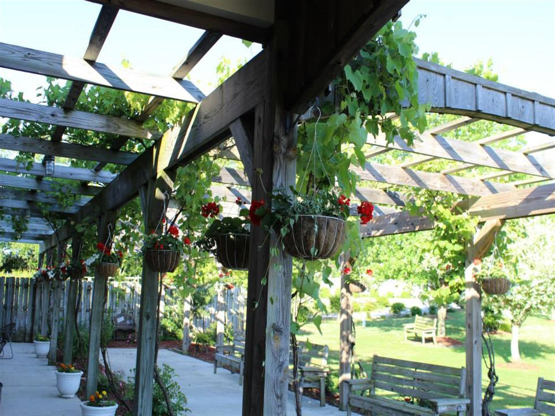 Photo of the outdoor decoration of the winery