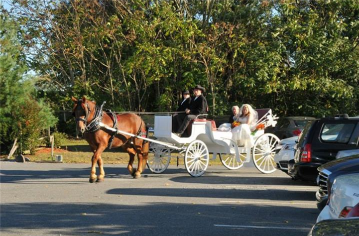 A bride with her father on a white horse-drawn cab
