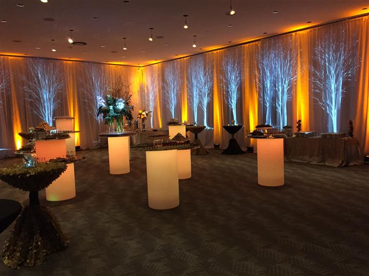 inside of an event for winter wonderland theme with sliver trees