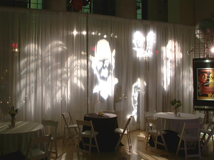 hollywood theme with palm trees displayed on a curtain