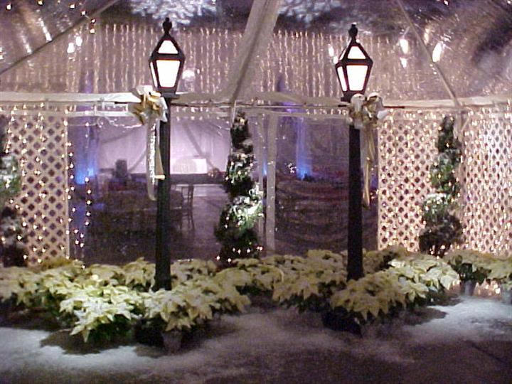 winter wonderland theme with christmas trees and fake snow