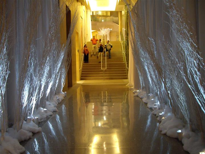 hallway enetering an event with lite up trees